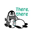 毎日使えるペンギンとパンダ2(英語版)(個別スタンプ:35)