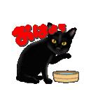 今日も黒猫で!(個別スタンプ:1)