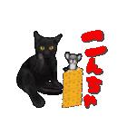今日も黒猫で!(個別スタンプ:2)