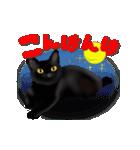 今日も黒猫で!(個別スタンプ:3)