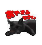 今日も黒猫で!(個別スタンプ:4)