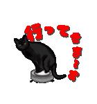 今日も黒猫で!(個別スタンプ:6)