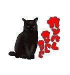 今日も黒猫で!(個別スタンプ:13)