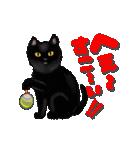 今日も黒猫で!(個別スタンプ:15)