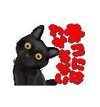 今日も黒猫で!(個別スタンプ:17)