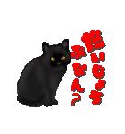 今日も黒猫で!(個別スタンプ:23)