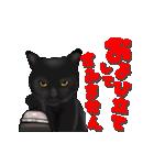 今日も黒猫で!(個別スタンプ:24)