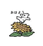 すこぶる動くウサギ【常夏】(個別スタンプ:1)