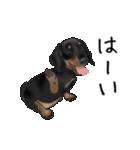 ダックしゅ5(個別スタンプ:4)