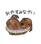 ダックしゅ5(個別スタンプ:6)
