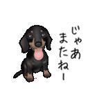 ダックしゅ5(個別スタンプ:8)