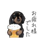 ダックしゅ5(個別スタンプ:11)