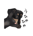 ダックしゅ5(個別スタンプ:18)