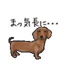 ダックしゅ5(個別スタンプ:21)