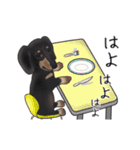ダックしゅ5(個別スタンプ:22)