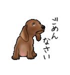 ダックしゅ5(個別スタンプ:23)