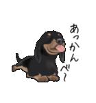 ダックしゅ5(個別スタンプ:24)