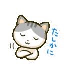 ニャンダフルねこちゃんズ(個別スタンプ:05)