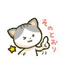 ニャンダフルねこちゃんズ(個別スタンプ:06)