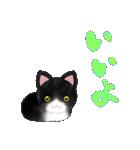 宮城の猫(個別スタンプ:11)