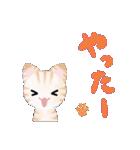 宮城の猫(個別スタンプ:23)