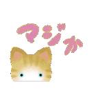 宮城の猫(個別スタンプ:25)