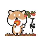 まる柴っちの秋(個別スタンプ:8)