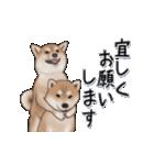 超元気柴Ⅱ(個別スタンプ:2)