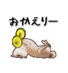 超元気柴Ⅱ(個別スタンプ:7)