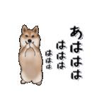 超元気柴Ⅱ(個別スタンプ:18)