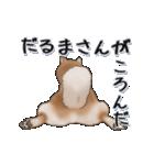 超元気柴Ⅱ(個別スタンプ:20)