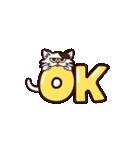 【関西弁】舌をしまい忘れたネコ(個別スタンプ:01)