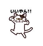 【関西弁】舌をしまい忘れたネコ(個別スタンプ:03)