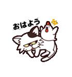 【関西弁】舌をしまい忘れたネコ(個別スタンプ:13)