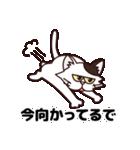 【関西弁】舌をしまい忘れたネコ(個別スタンプ:30)