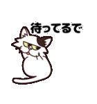 【関西弁】舌をしまい忘れたネコ(個別スタンプ:31)