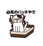 【関西弁】舌をしまい忘れたネコ(個別スタンプ:39)