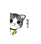 動く!子ネコ&ハムスター(個別スタンプ:01)