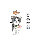 動く!子ネコ&ハムスター(個別スタンプ:02)