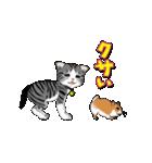 動く!子ネコ&ハムスター(個別スタンプ:15)