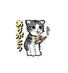 動く!子ネコ&ハムスター(個別スタンプ:17)