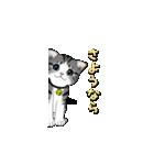 動く!子ネコ&ハムスター(個別スタンプ:22)