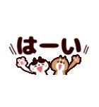 省スペース★敬語❤️ハチワレネコと豆柴犬(個別スタンプ:01)