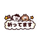 省スペース★敬語❤️ハチワレネコと豆柴犬(個別スタンプ:20)