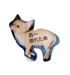 ichidog(個別スタンプ:05)