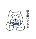 1本まゆげ犬ハッピーくん(個別スタンプ:11)
