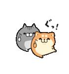 動くボンレス犬とボンレス猫(個別スタンプ:01)