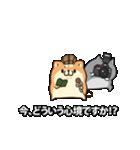 動くボンレス犬とボンレス猫(個別スタンプ:09)