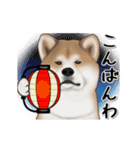 動く!秋田犬Ⅱ(個別スタンプ:5)