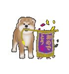 動く!秋田犬Ⅱ(個別スタンプ:7)